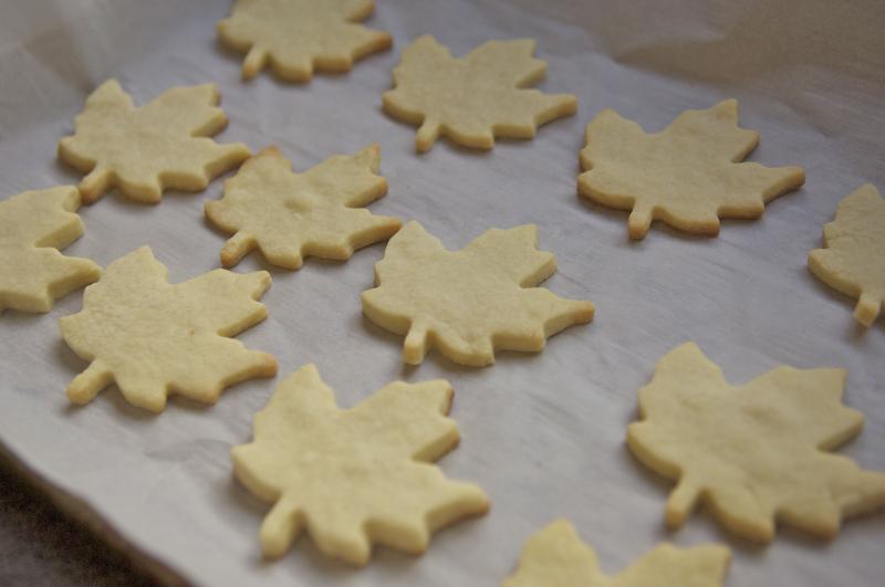 Maple sugar cookies 2