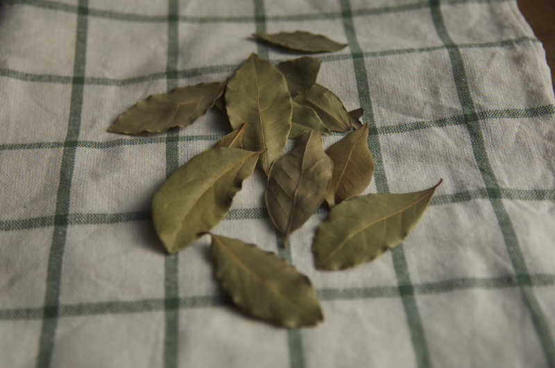 Bay leaves 3